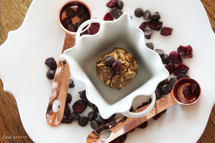 No Bake Chocolate & Dried Cranberry Energy Balls