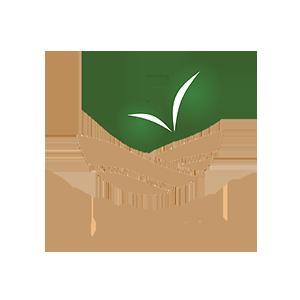 dr montys.png