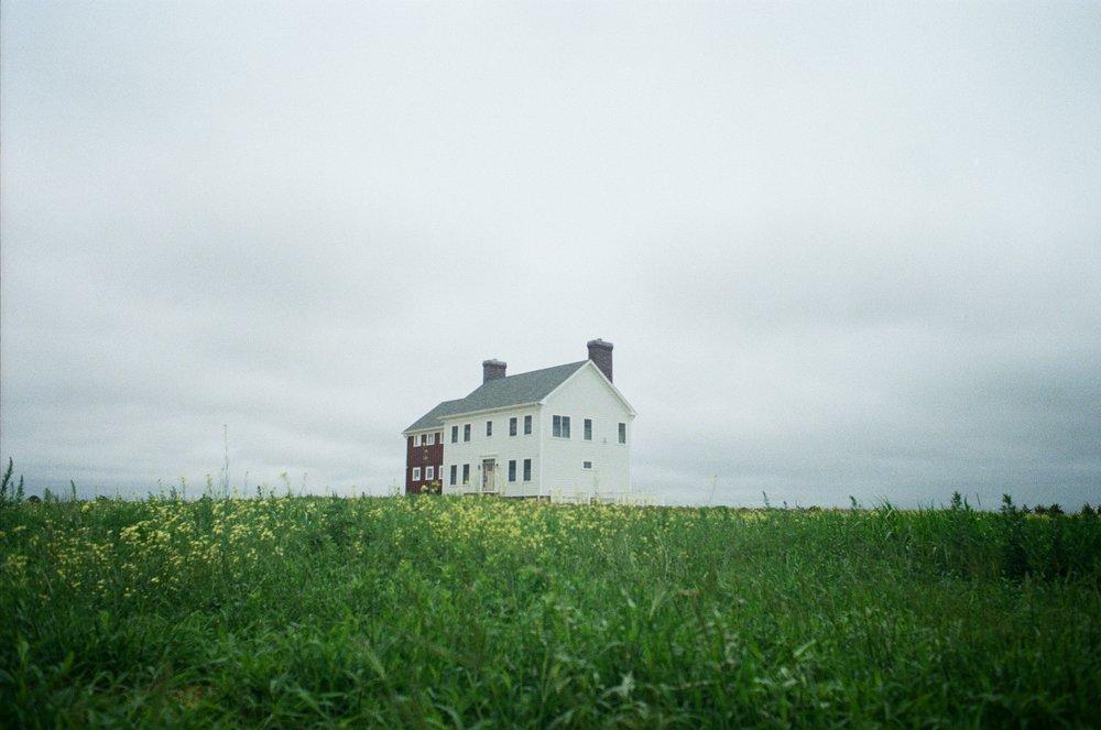 House_in_flower_field.jpg