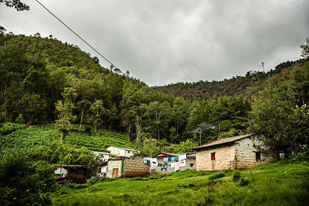 EntreMundos-PWB-220.jpg