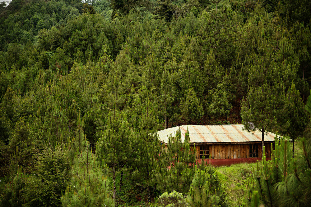 EntreMundos-PWB-287.jpg