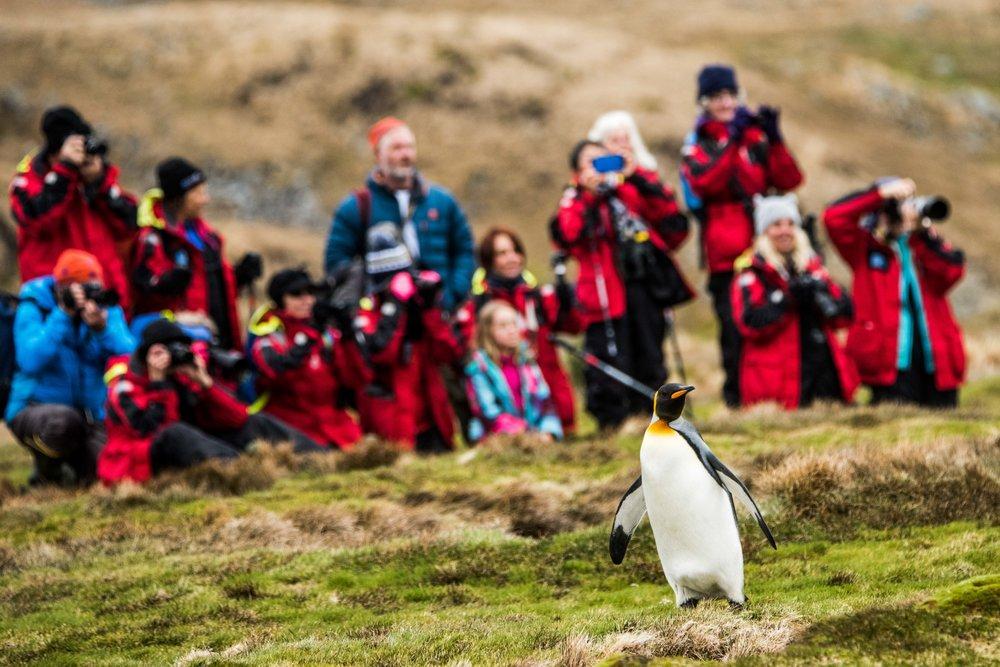 Loveandadventurephotography-Antarctica-720.jpg