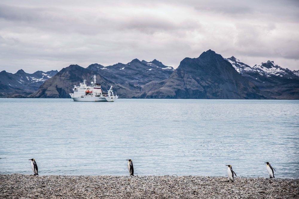 Loveandadventurephotography-Antarctica-721.jpg