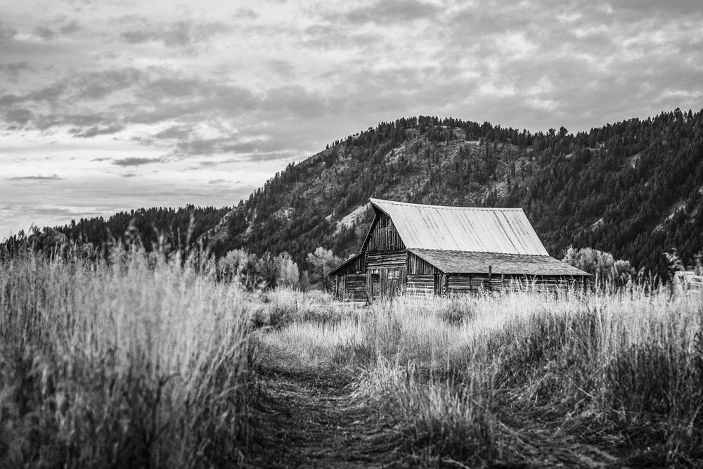 Yellowstone-GrandTetons-702.JPG