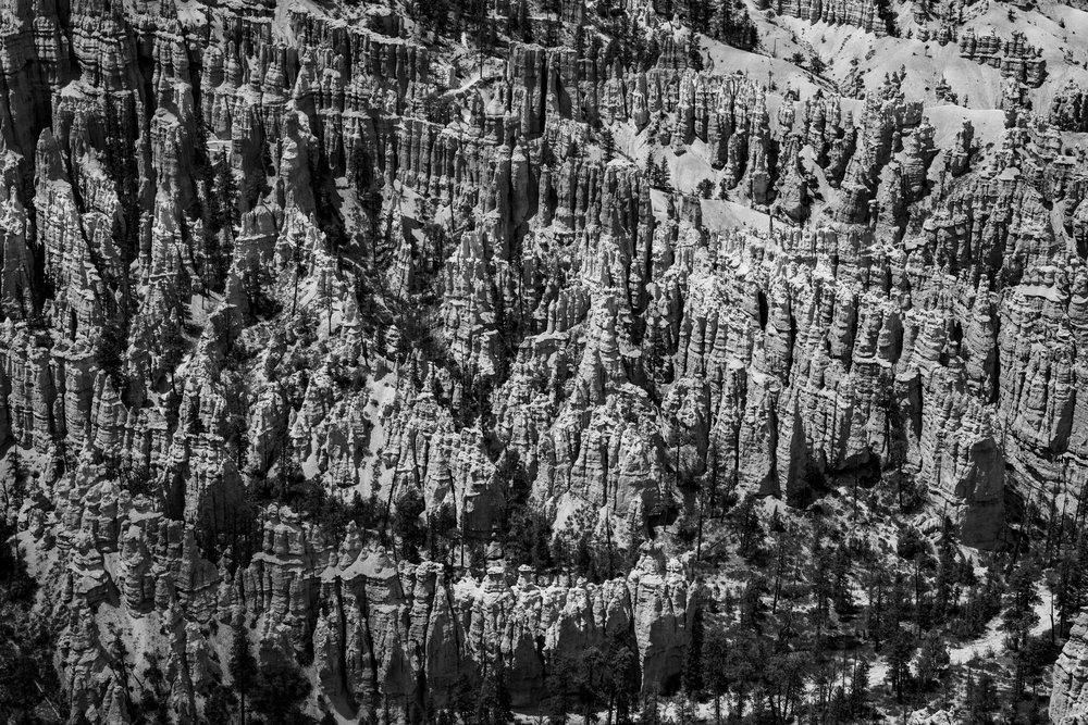 UtahRoadtrip2018-102.jpg