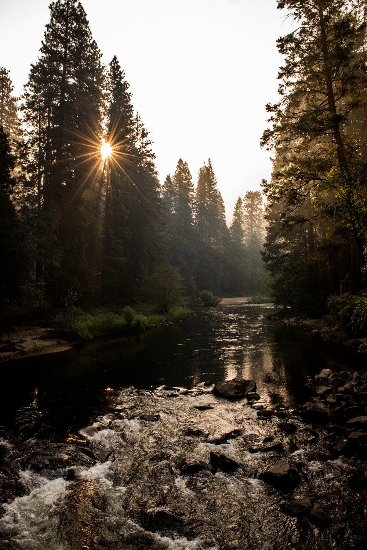Yosemite2018-100.jpg