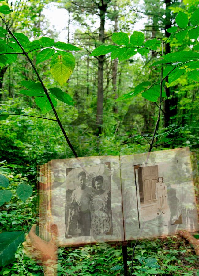 Lorie Novak,  Postmemory , archival inkjet print