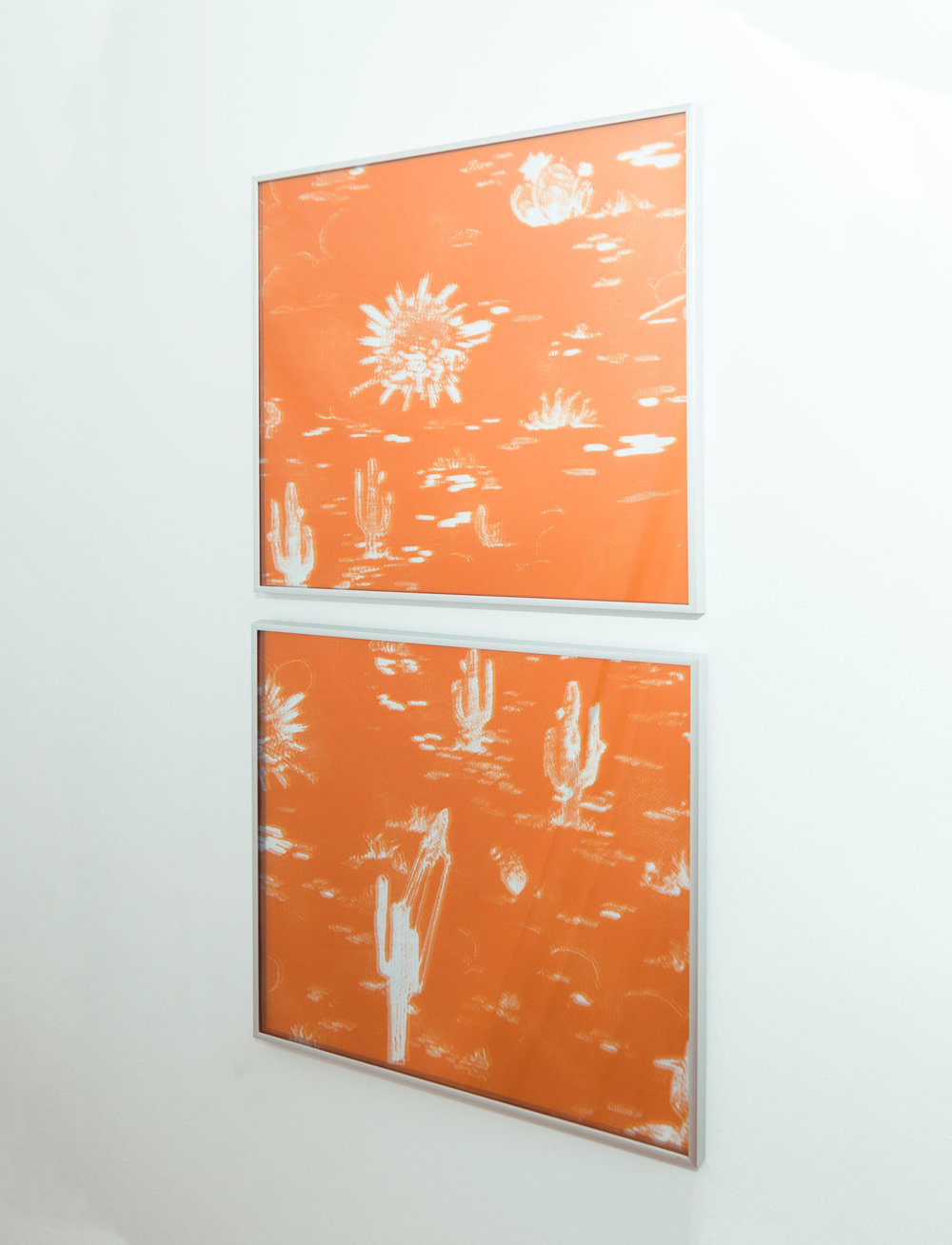 Shannon Lowe,  Recursion 016 , inkjet prints and acrylic