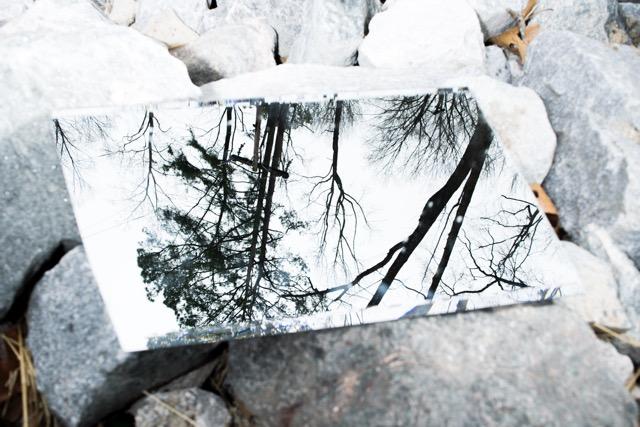 Maya Jackson,  Reversed Reflections , digital print