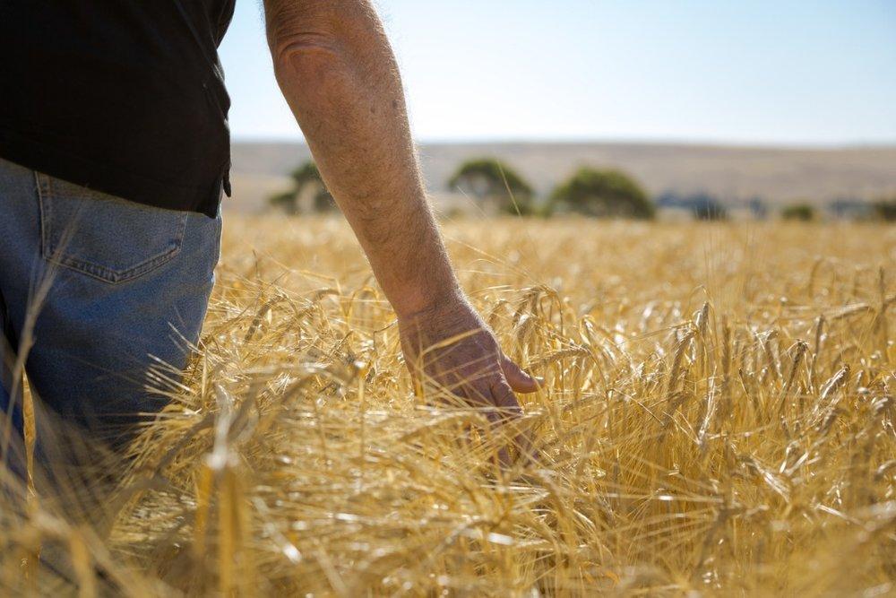 STP & HR for your farm business