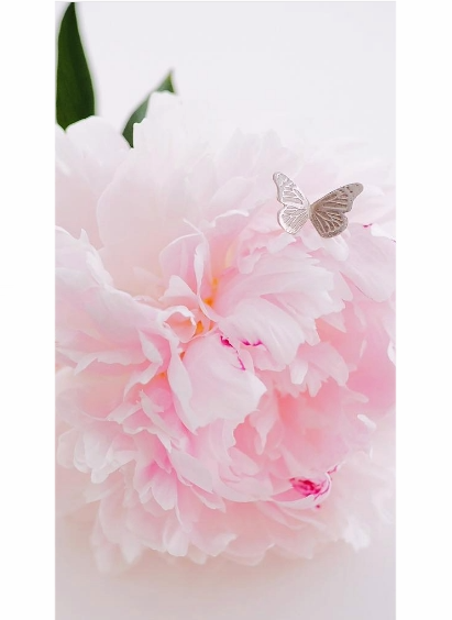 Silver Butterfly Lapel Pin in partnership with The Pink Ribbon Foundation