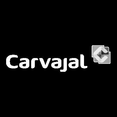 CARVAJAL-PRESENTACIONES-EFECTIVAS-CASOS.png