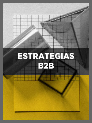Estrategias b2b