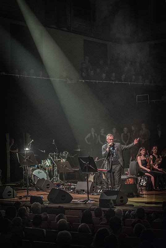 John Brereton - founder of the Dublin Bowie Festival