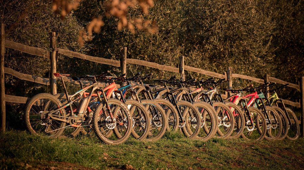mountainb bikes.jpg