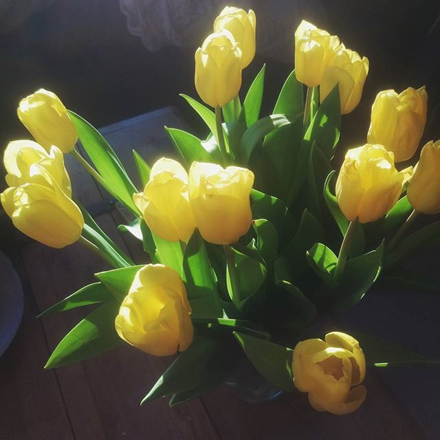 Easter flowers & morning sunshine as I head off to yoga ^.^ #mornings #bouquet #tulips #riseandshine #springfeeling