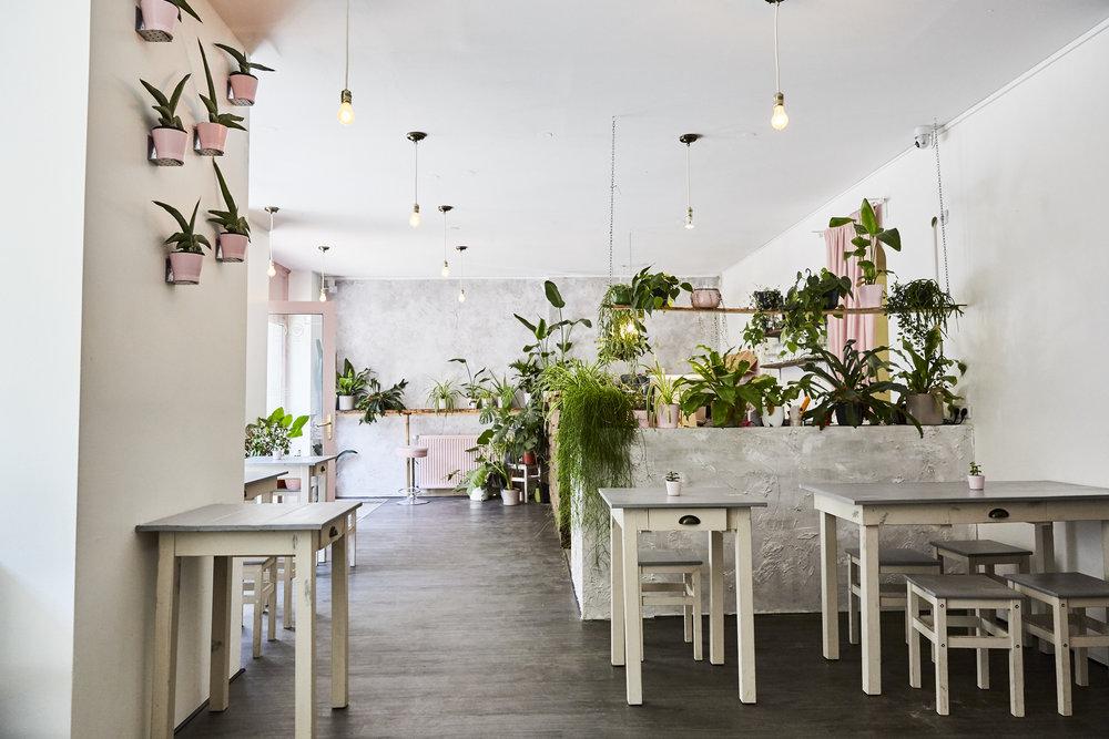 Nicht nur lecker, auch wunderschön ist es im  Avocado Club , in der Holteistraße 13,10245 Berlin