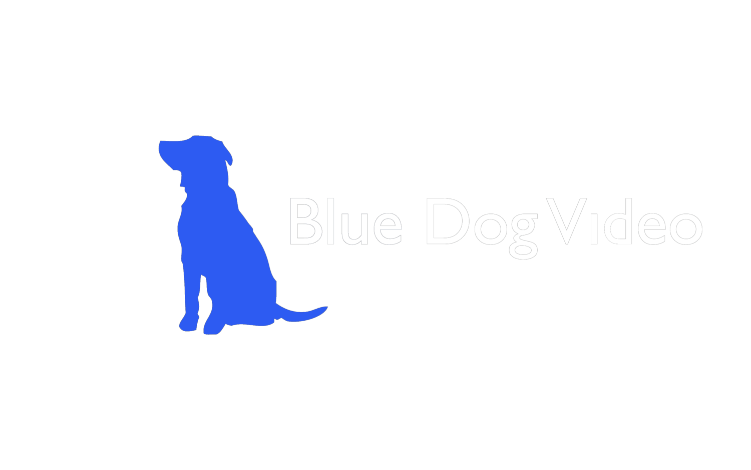Blue Dog Video
