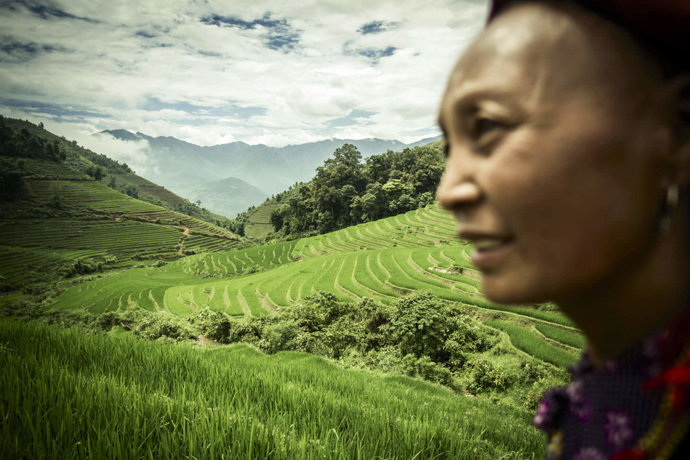 Facing paddy fields | Documentary photographer in Vietnam | Francis Roux