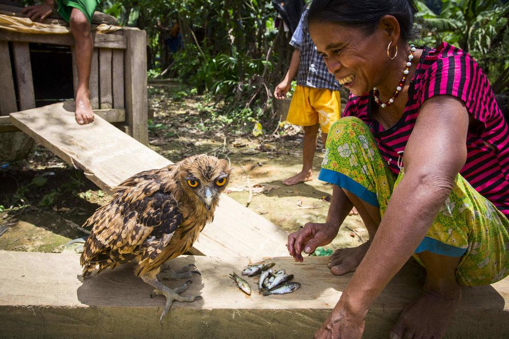Feeding an owl | Environmental portrait in Vietnam | Documentary photographer in Southeast Asia