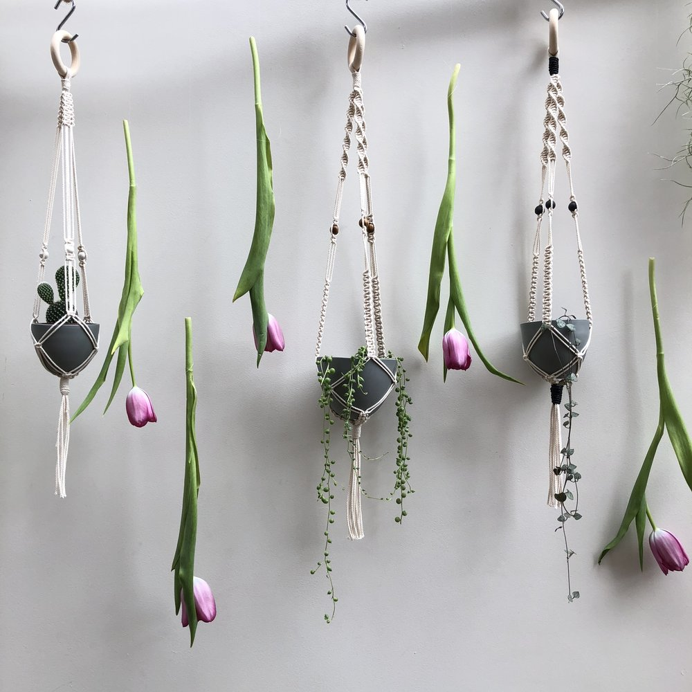 Hanging Planters of my dreams