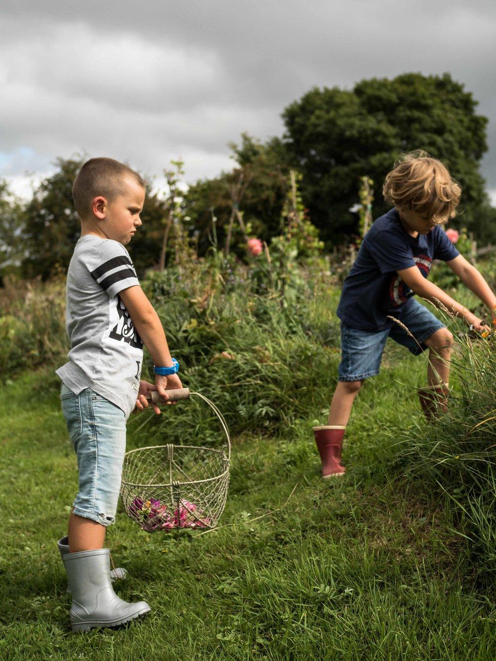 Raising free range kids