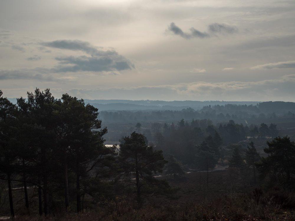 Wintery scenes in the UK