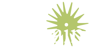 Terrain Design & Management