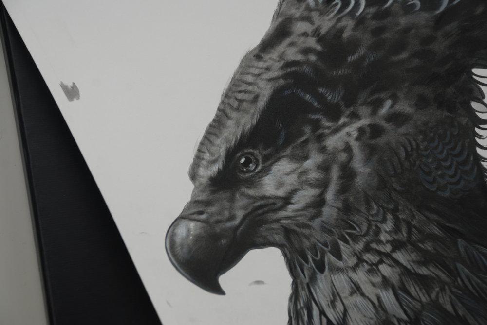 image 2 Pheonix Painting Process.JPG