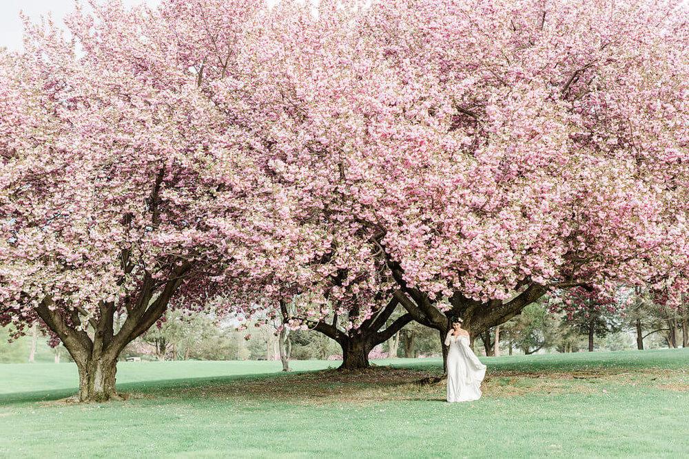 Fairfax Country Club Wedding (29).jpg