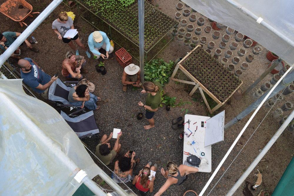 permaculture costa rica porvenir design consultation