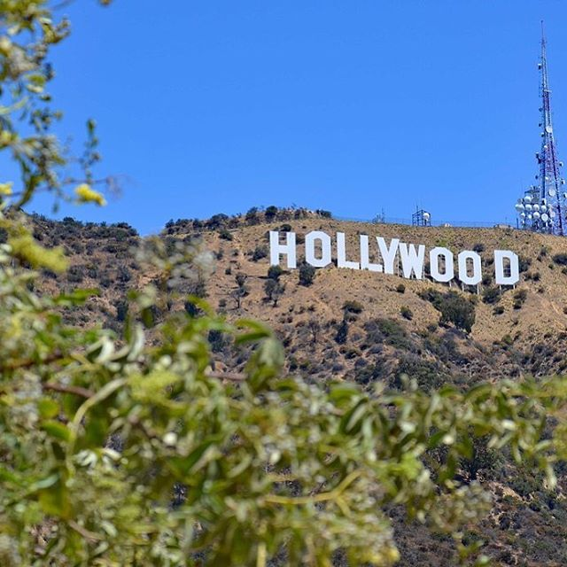 Hollywood ⭐️ 🎬🎥🎞📽 . . #hollywood #losangeles #california #cali #ca #destination #whereto #travel #goabroad #studyabroad #sarashomestay #homestay