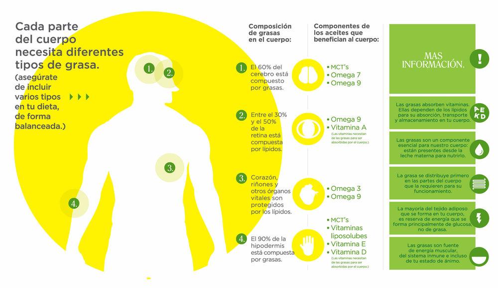 el cuerpo, el aceite y sus beneficios
