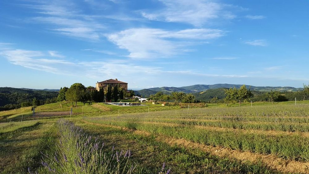 Locanda Cugnanello landscape.jpg