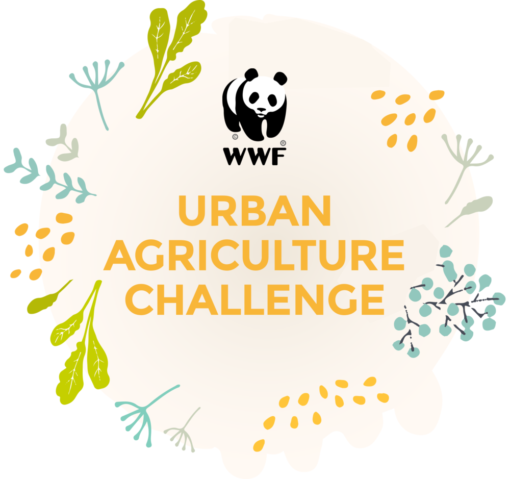 wwf-challenge.png