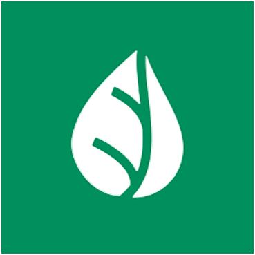Urban kombucha logo.png
