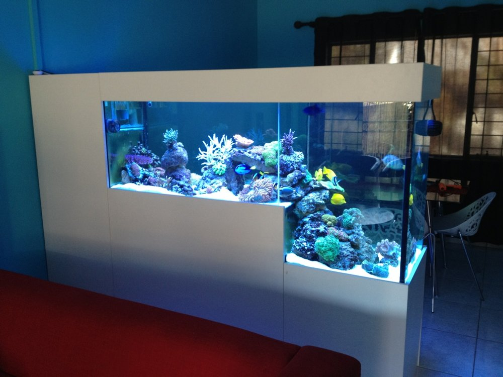 Drop-Off Peninsula Room Divider Aquarium
