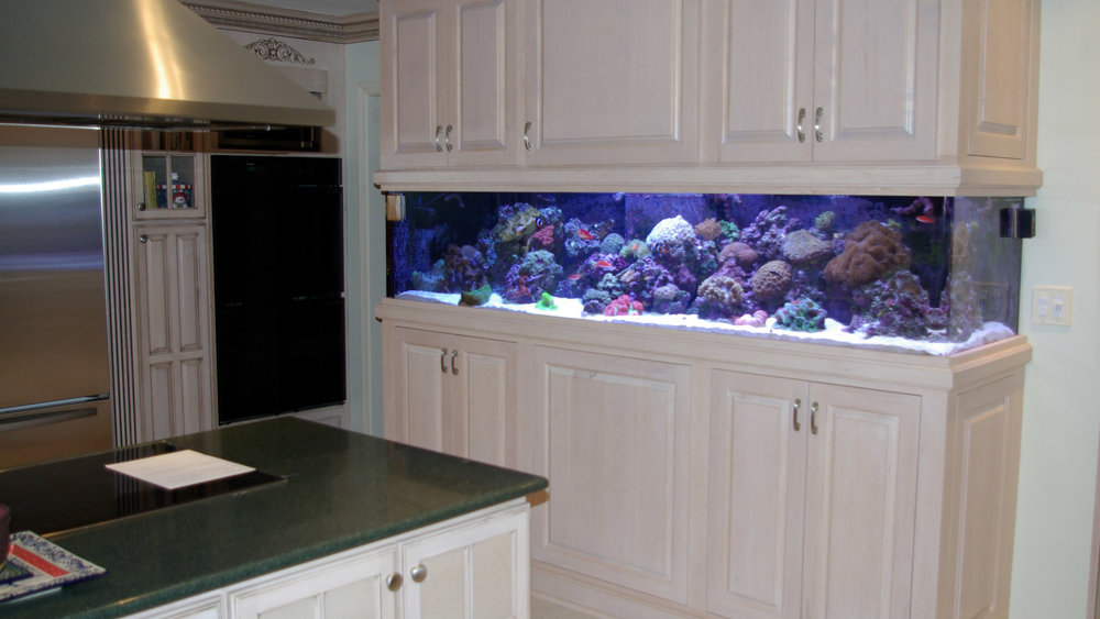Kitchen Cabinet Aquarium