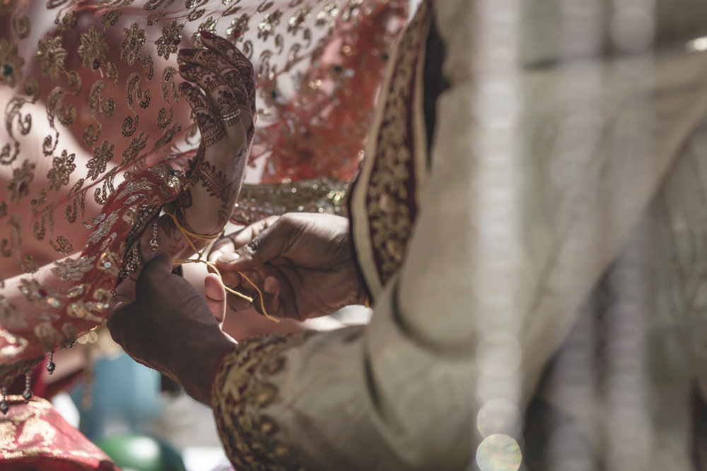 aria minneapolis indian wedding photographer-42.jpg