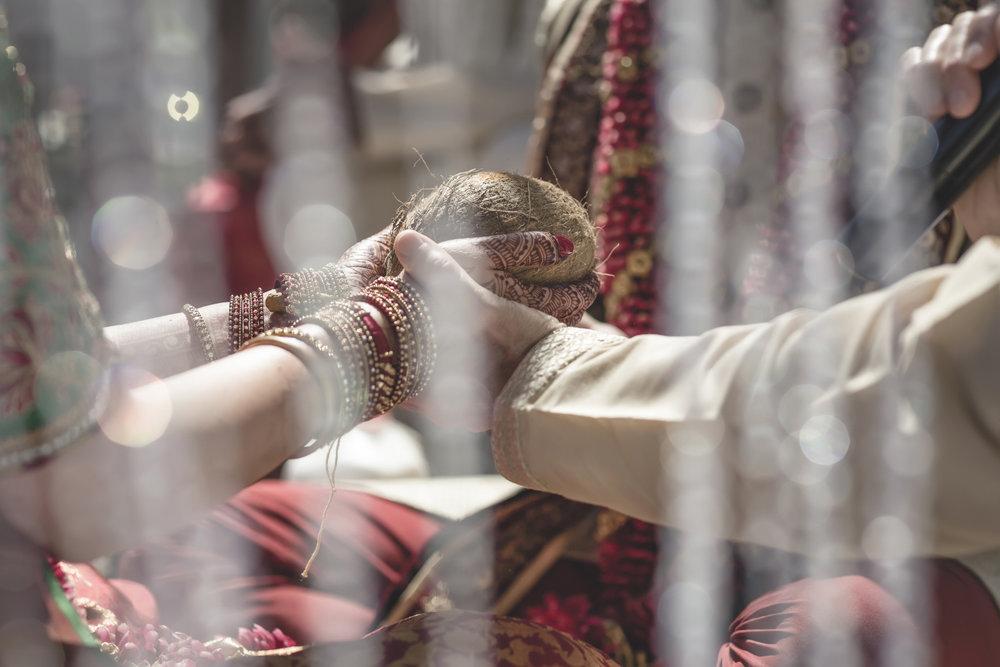 aria minneapolis indian wedding photographer-45.jpg