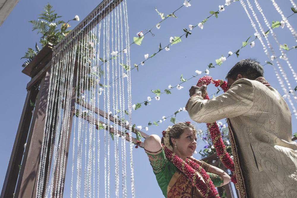 aria minneapolis indian wedding photographer-52.jpg