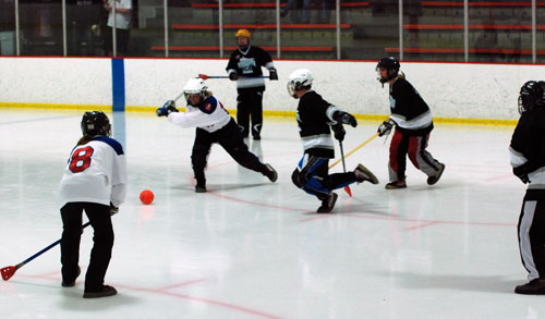 Photo:  USA Broomball