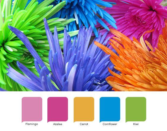 Summer Colors -