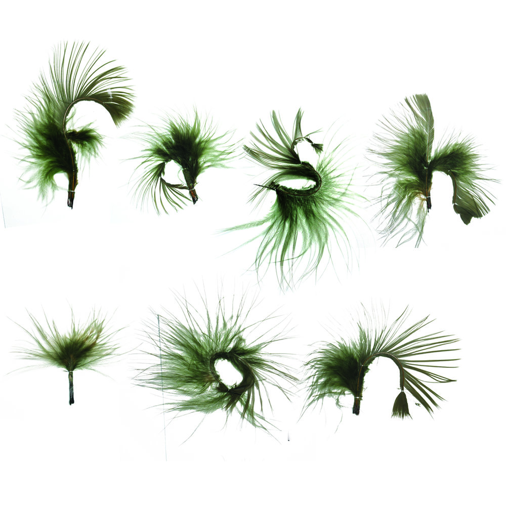featherletters.jpg