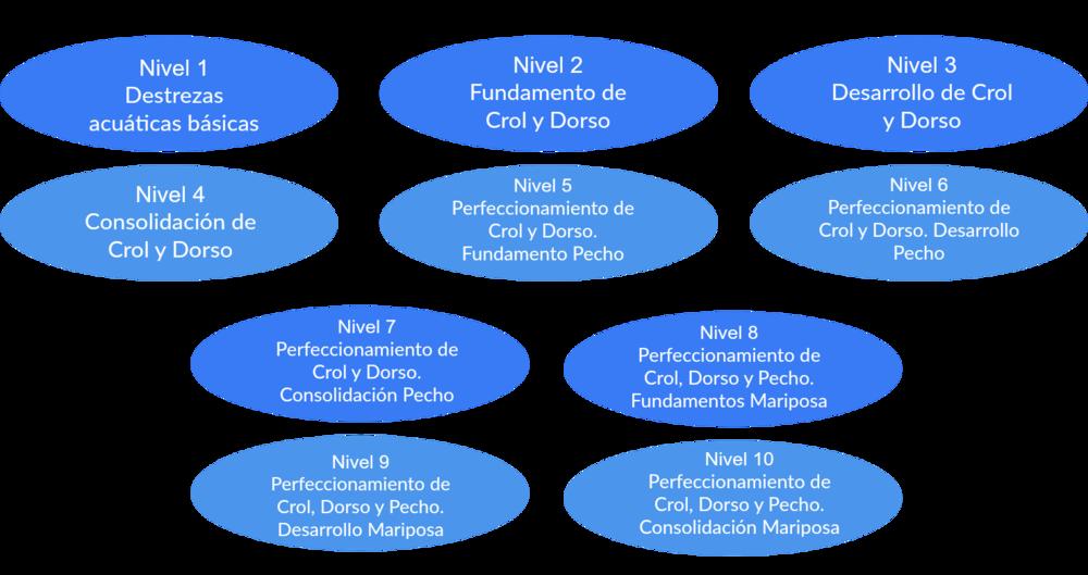 Objetivos Especìficos para el dominio de estilos de natación