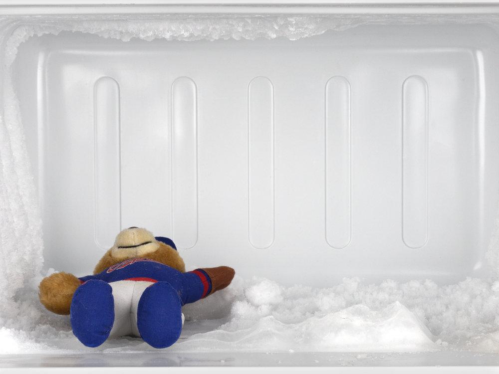 8-Leftovers, Teddy.jpg