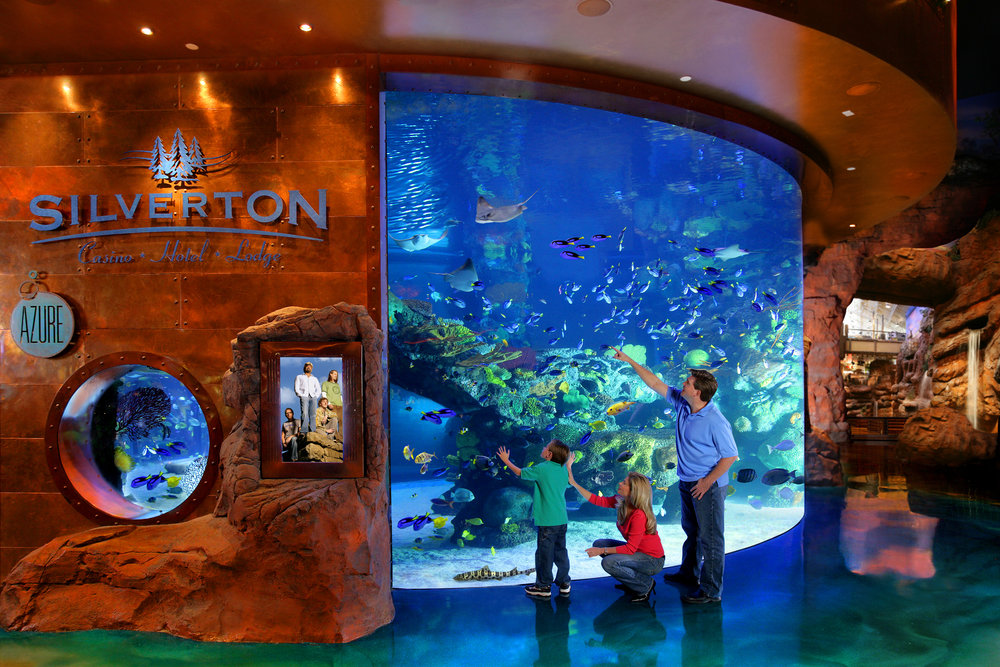 Silverton Casino Aquarium - You can visit the Silverton Casino Aquarium for absolutely free any day or time because it's located on the casino floor. At certain times of day they have a mermaid show as well as scheduled feeding times for the rays. Don't miss the jelly fish tanks above the Mermaid Lounge!