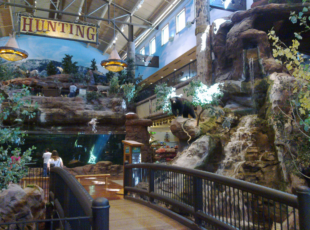 Bass Pro Shops - While you're at the Silverton Casino, stop by the Bass Pro Shop directly adjacent to the free aquarium tank. The Bass Pro Shop has a huge collection of taxidermy, beautiful outdoor landscapes created inside and aquarium tanks that house some of the largest game fish you've ever seen. Entry is free and you'll spend at least an hour gazing at the museum size collection of Taxidermy and wild life.