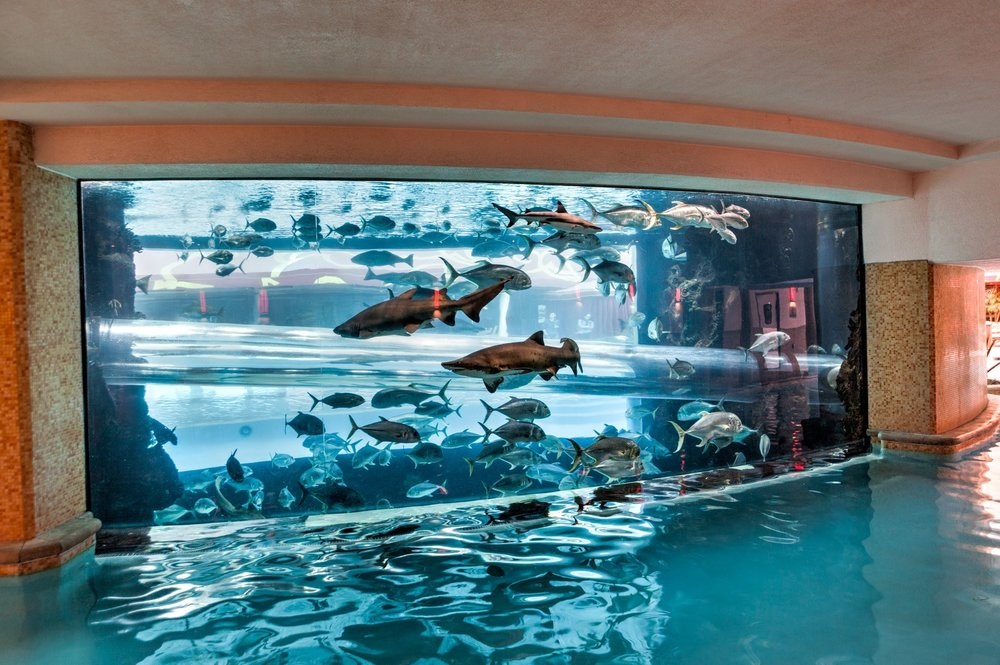 Golden Nugget Shark Tank - The centerpiece of the pool at the Golden Nugget, located in Downtown Las Vegas, is an amazing shark aquarium. The pool is only free to hotel guests but you can still see the aquarium while walking around on the casino floor as a visitor. Another free attraction at the Golden Nugget is The Hand of Faith. It's the largest gold nugget in existence and the second largest ever found weighing in at 61 pounds.