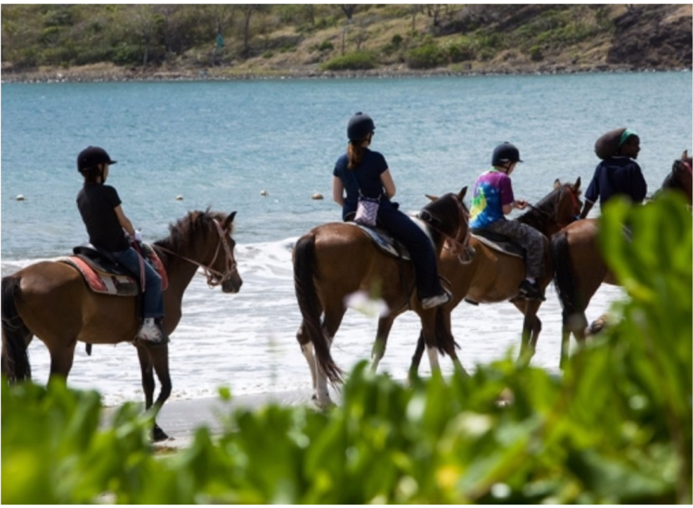 HORSE-BACK RIDING   Two horse-riding centres offer tours for visitors to explore the island on horse-back, riding through the banana plantations, beautiful coastline and pasture lands.